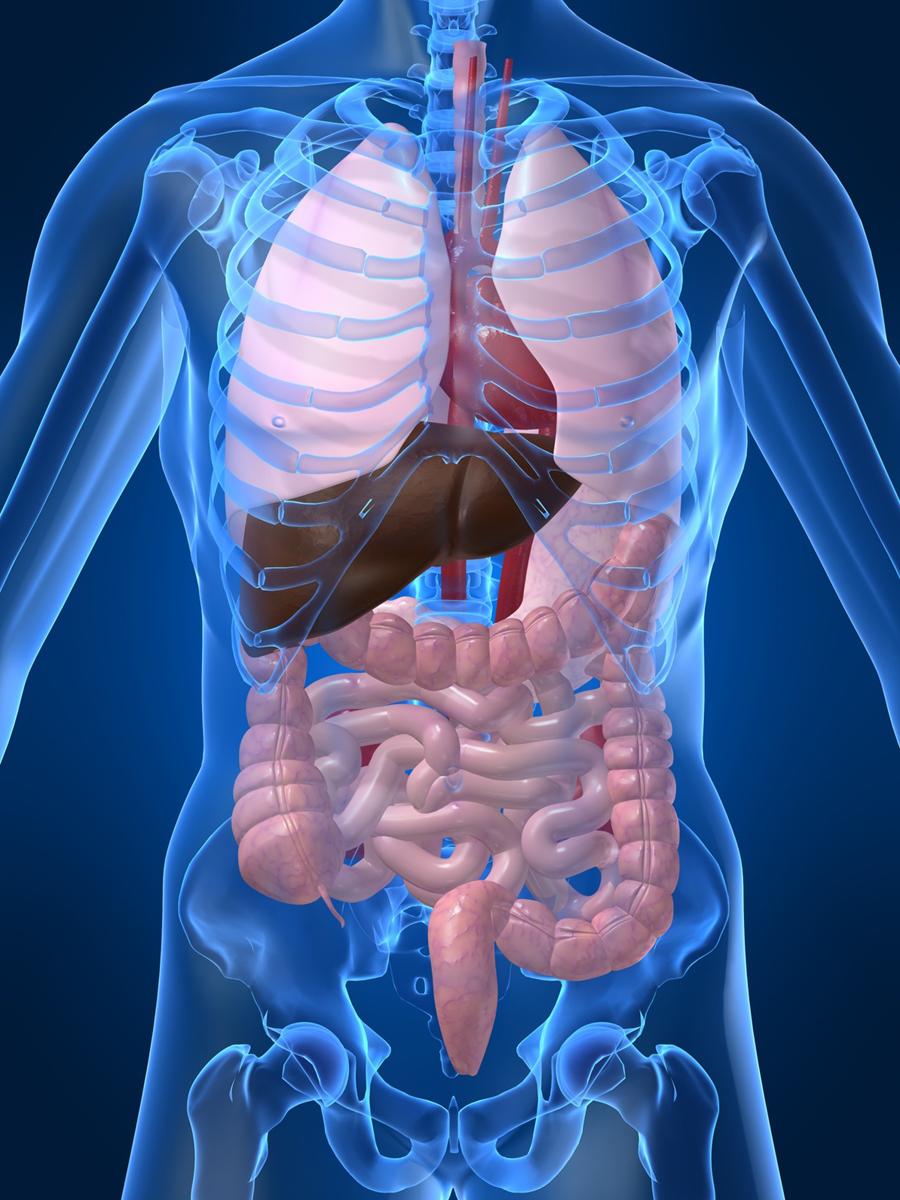 Is Heartburn A Symptom Of Breast Cancer